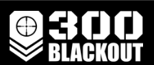 300-blackoutupper.com